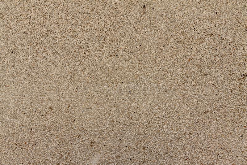 On the wall, light-colored plaster from coarse sand, background. On the wall, light-colored plaster from coarse sand, background stock image