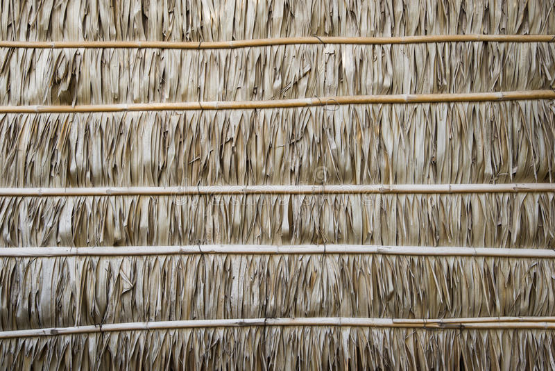 Wall Made Of Nipa Palm Leaves Texture And Background