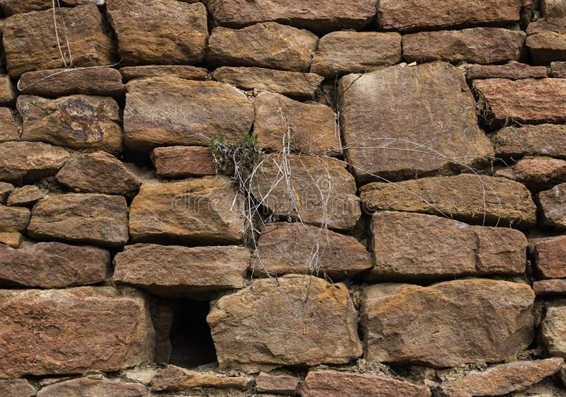 The wall is made of old, ancient stones, with plants growing from seams and cracks. close up. The wall is made of old, ancient stones, with plants growing from stock photo