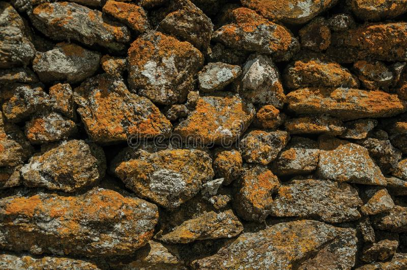 Wall made of stones with moss and lichens stock images