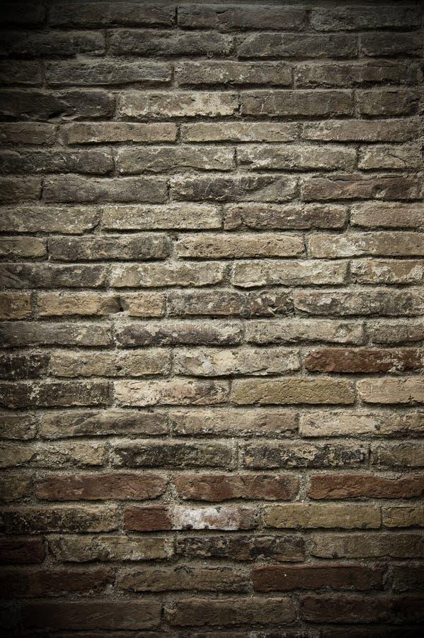 Free Wall Of Bricks Stock Photo - 14399910