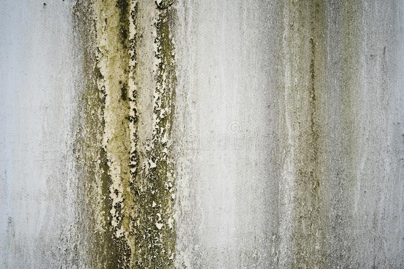 The wall of an old oxidized aluminum trailer covered with mold. An aluminum wall of an old trailer, faded oxidized and moldy with traces of perennial streams of royalty free stock photo