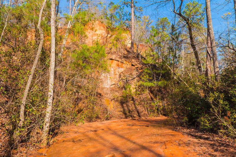Wall of Providence Canyon and clay watercourse, USA royalty free stock images