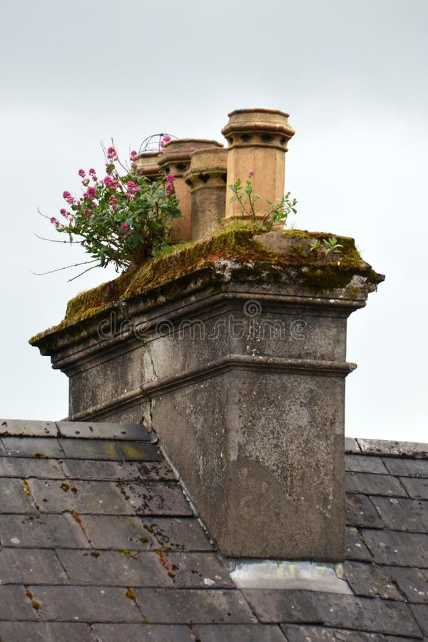 Wall, Sky, Roof, Chimney royalty free stock image