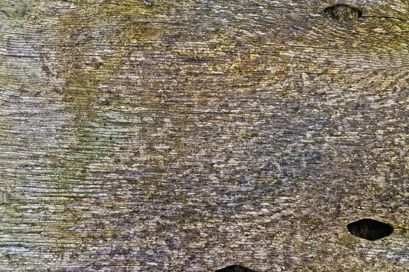 Wall, Stone Wall, Texture, Wood stock image