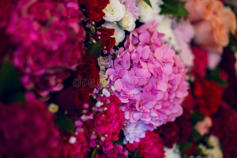 Wall with variety of flowers, roses, carnations, hydrangeas stock photos