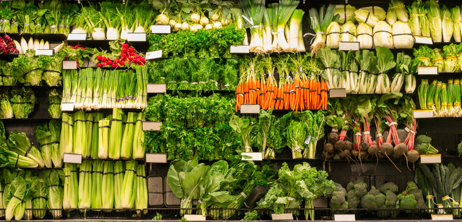 Wall of vegetables. An entire wall of many different kinds of vegetables for sale stock photography