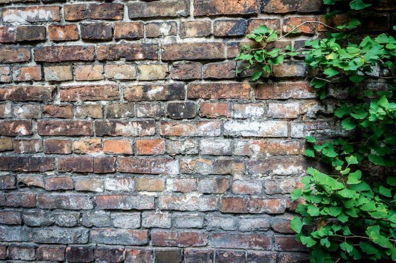Wall of the Warsaw Ghetto, Poland stock photos
