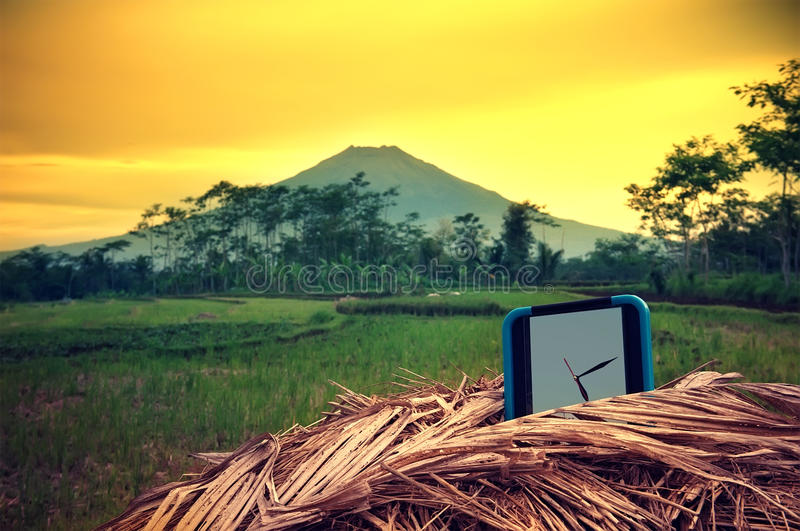 Wall watch on ricefield stock photography