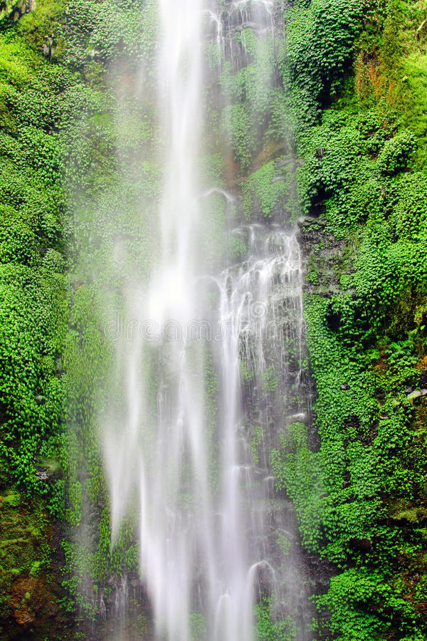 Download Wall waterfall stock photo. Image of rivers, grass, water - 26851888