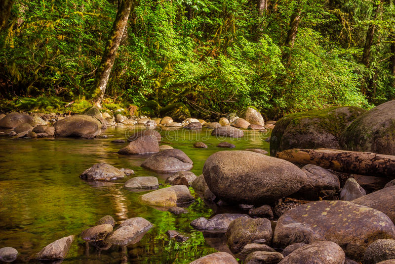 Wallace River, Washington State stockbilder