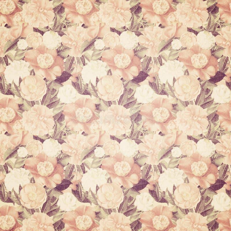 Wallaper chique floral gasto floral francês do vintage fotografia de stock
