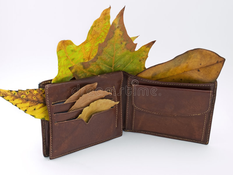 Wallet in the Autumn. Metaphor about man without job after economy crises and his wallet in the fall royalty free stock photos