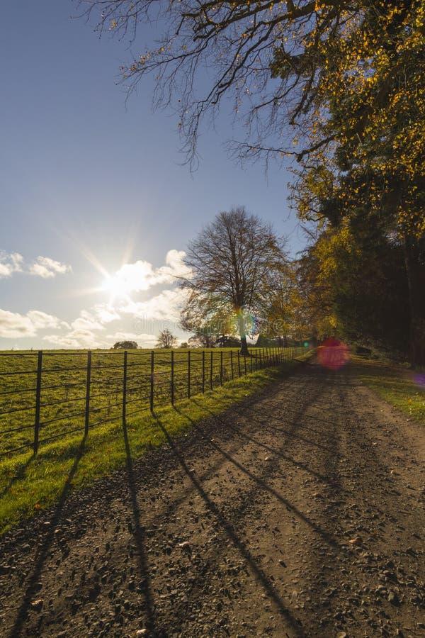 Wallington w Northumberland zdjęcie royalty free