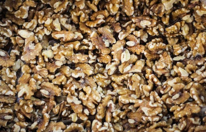 Wallnuts royalty-vrije stock afbeelding