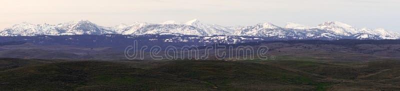 Wallowa山俄勒冈状态Sacajawea峰顶 图库摄影