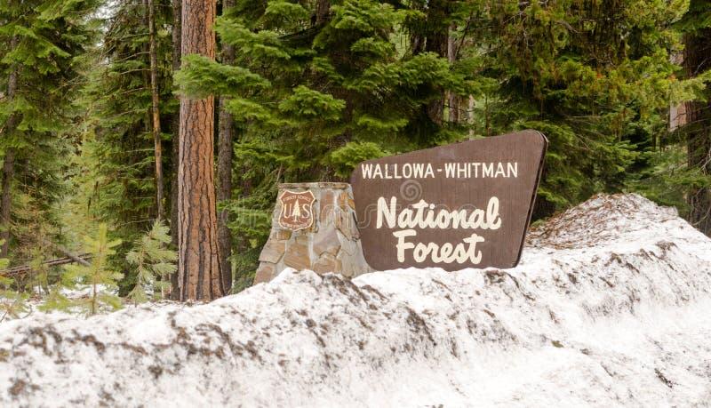 Wallowa惠特曼Natinal森林词条标志界限俄勒冈状态 库存图片