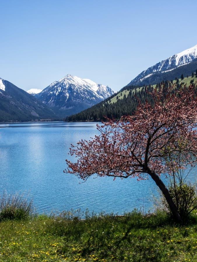Wallowa Lake with snow covered Sentinel Peak stock photo