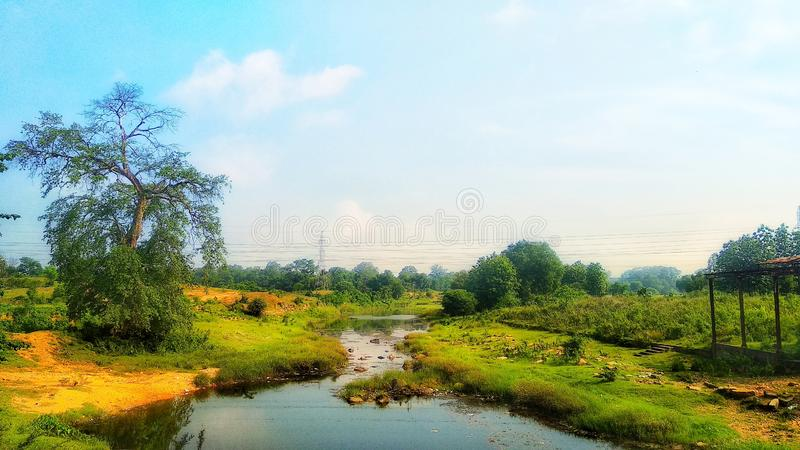 Wallpaper. Nature, river, sky, tree royalty free stock image