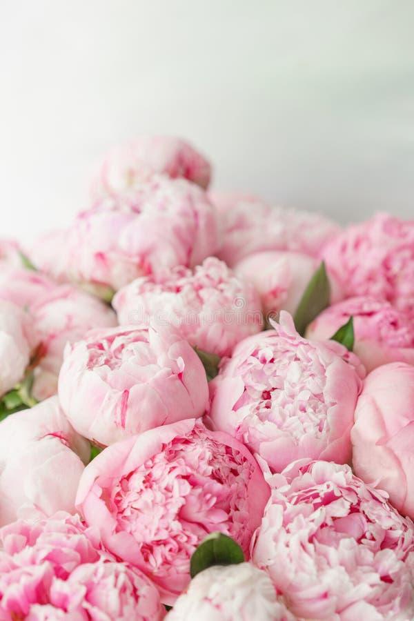 wallpaper Peônias cor-de-rosa das flores bonitas Composições florais, luz do dia fotos de stock royalty free