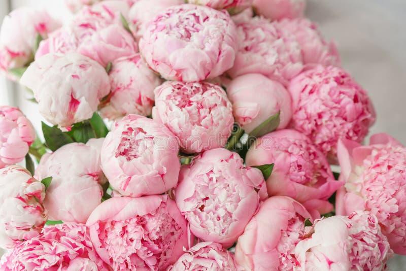 wallpaper Pivoines roses de belles fleurs Compositions florales, lumière du jour image libre de droits