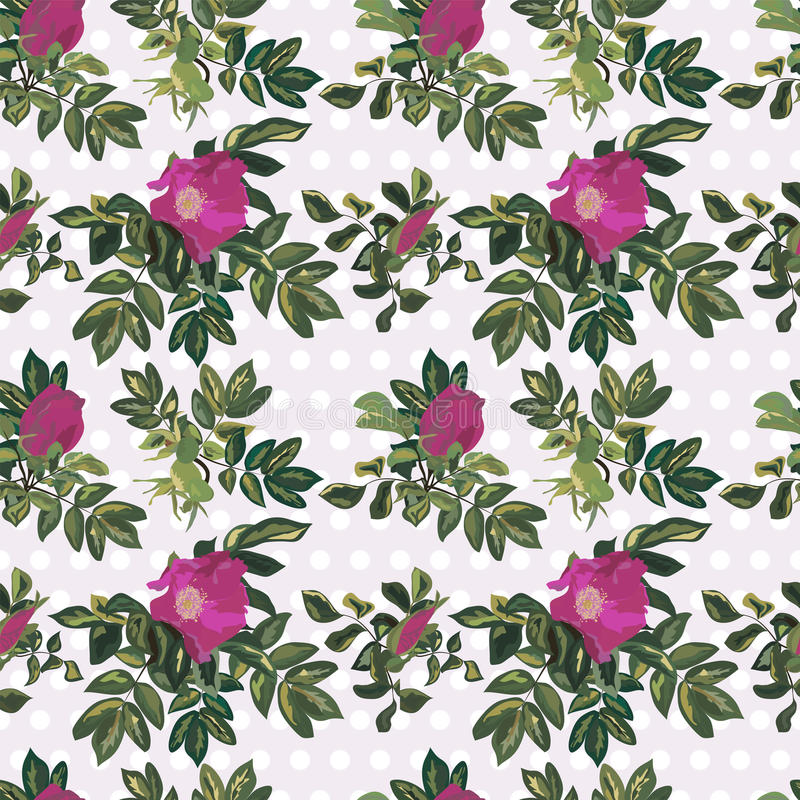 Wallpaper vintage rose pattern. On dotted background vector illustration