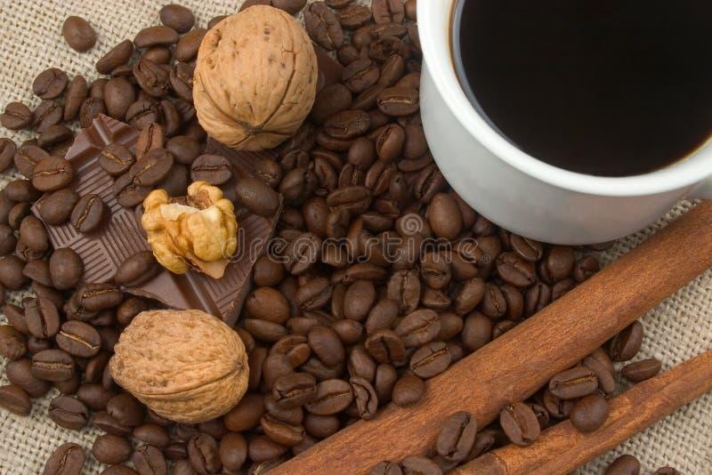 Walnüsse, Kaffeebohnen, Schokolade und Zimt lizenzfreie stockbilder
