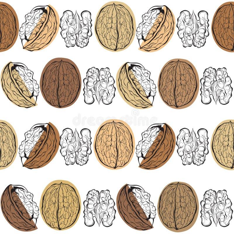 Walnüsse Nahtloses Muster auf einem weißen Hintergrund stilvoll lizenzfreie abbildung