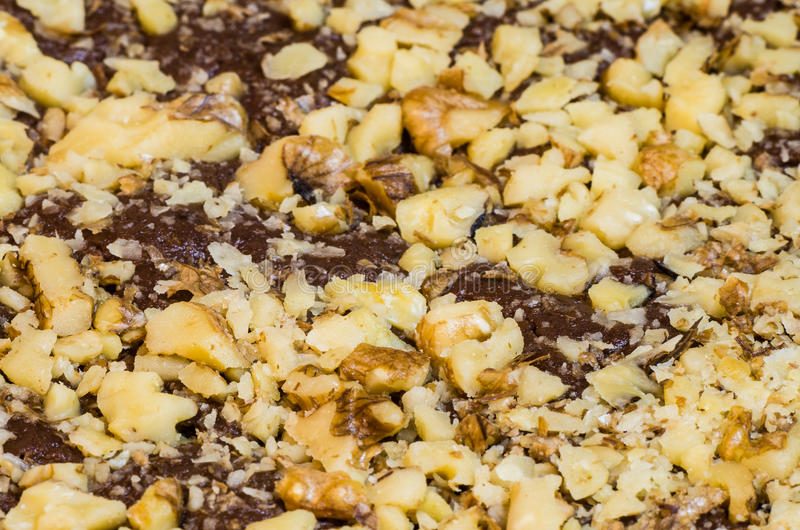 Walnussbelag auf Schokoladenschokoladenkuchen lizenzfreie stockfotos
