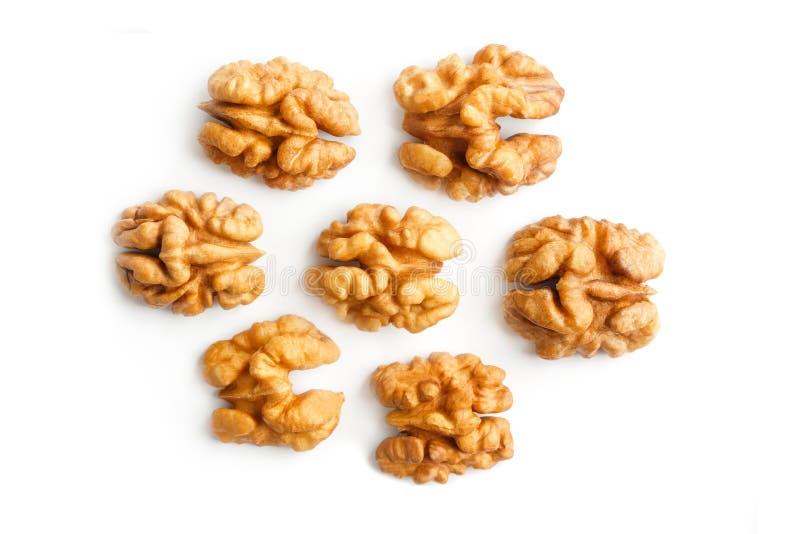 walnut Πυρήνας ξύλων καρυδιάς E Με το ψαλίδισμα του μονοπατιού στοκ εικόνα με δικαίωμα ελεύθερης χρήσης
