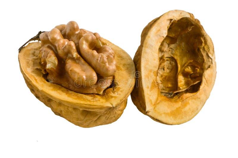 Download Walnut stock photo. Image of fruit, ingredient, broken - 12645508