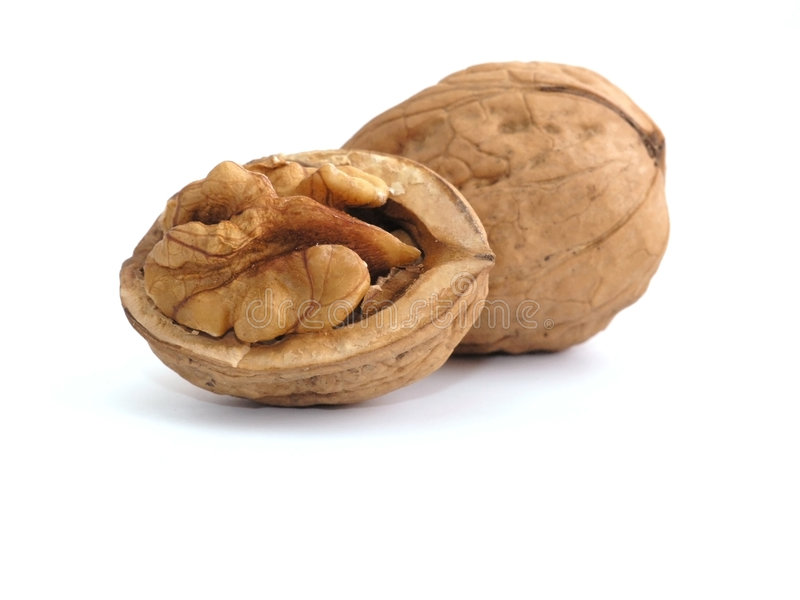 Download Walnut stock image. Image of fruit, snack, walnut, hard - 1295331