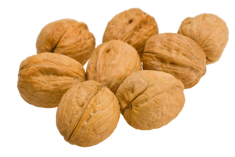 Download Walnut stock photo. Image of broken, food, small, section - 18004026