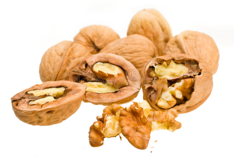 Download Walnut Royalty Free Stock Photos - Image: 18004078