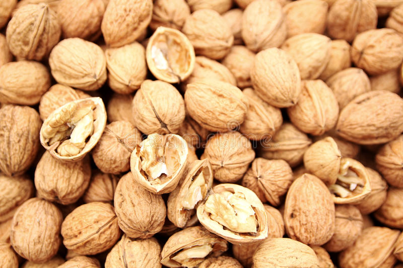 Download Walnut Stock Image - Image: 18568771