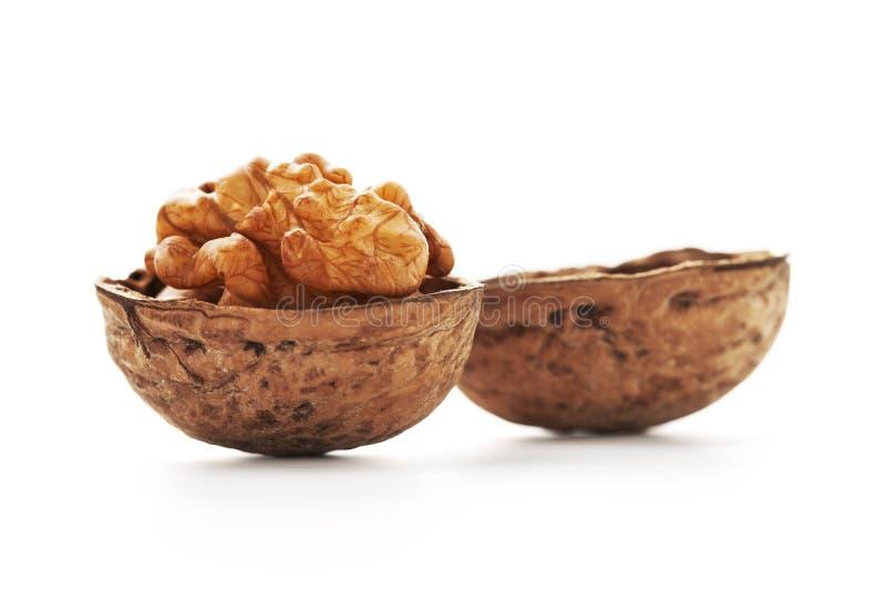 Download Walnut stock image. Image of beige, dessert, tasty, diet - 22823905
