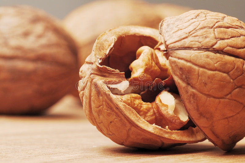 Download Walnut stock photo. Image of organic, macro, nutshell - 5666646