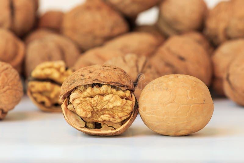 walnut στοκ εικόνες