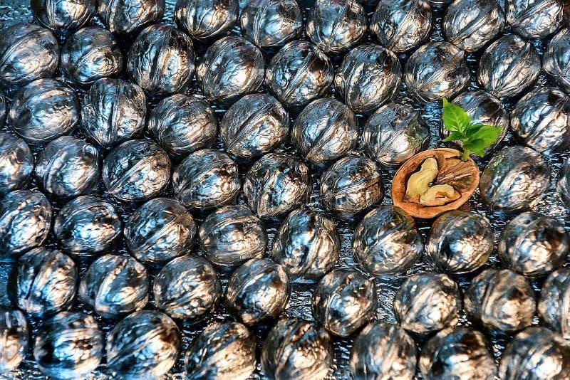 walnut стоковая фотография rf