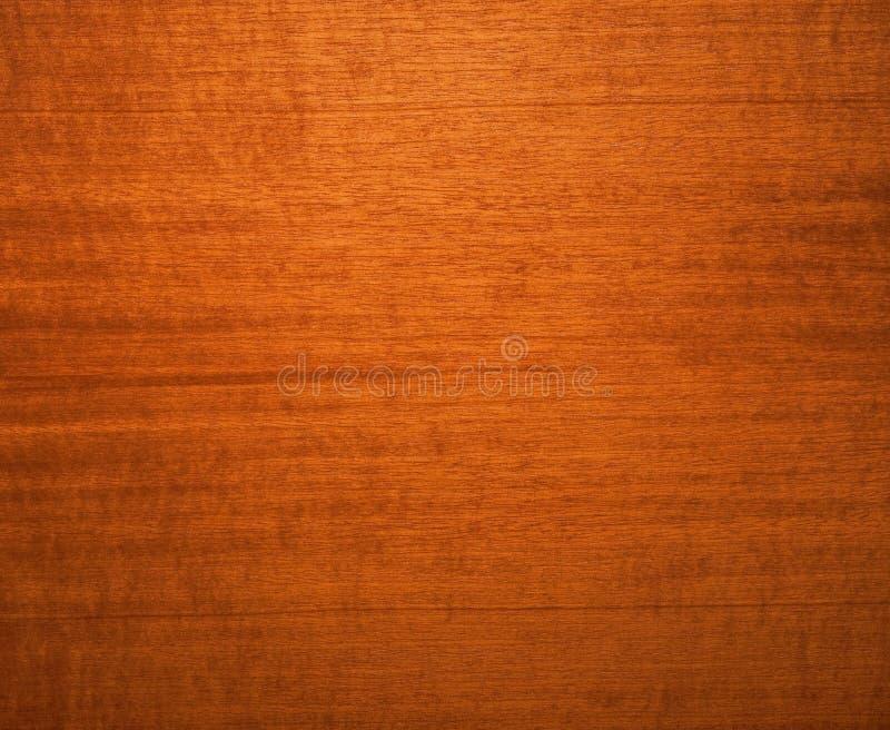Walnut background royalty free stock image