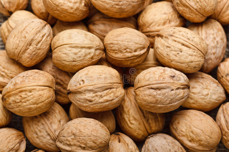 Walnut background royalty free stock photos