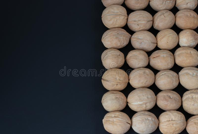 Walnut on black background stock photo