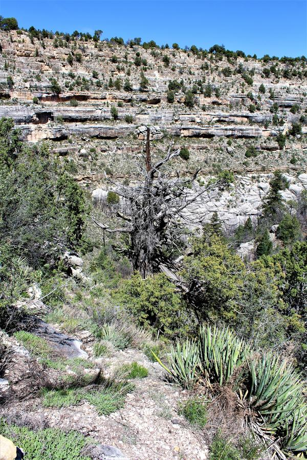 Walnut Canyon. Clift dwellings at Walnut Canyon, National Monument in Arizona stock photography