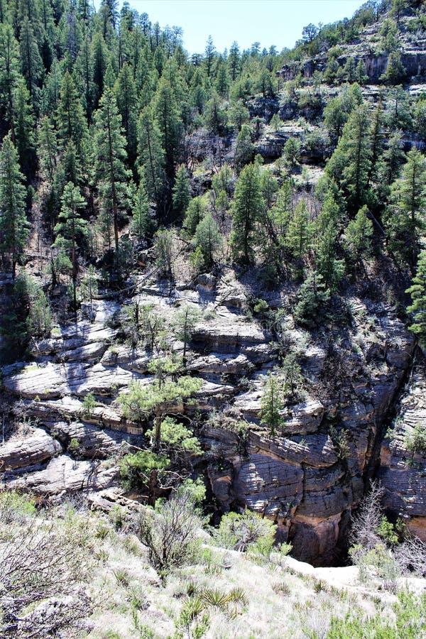 Walnut Canyon stock images