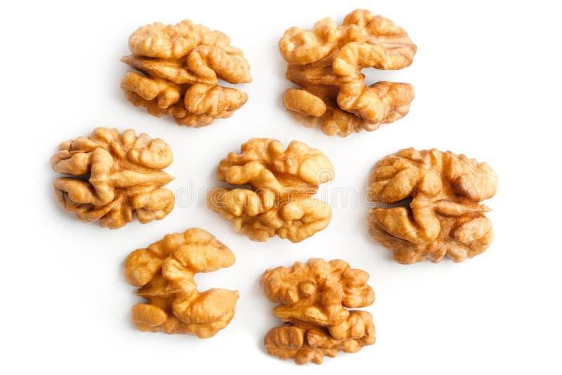 walnut Πυρήνας ξύλων καρυδιάς E Με το ψαλίδισμα της πορείας στοκ εικόνα