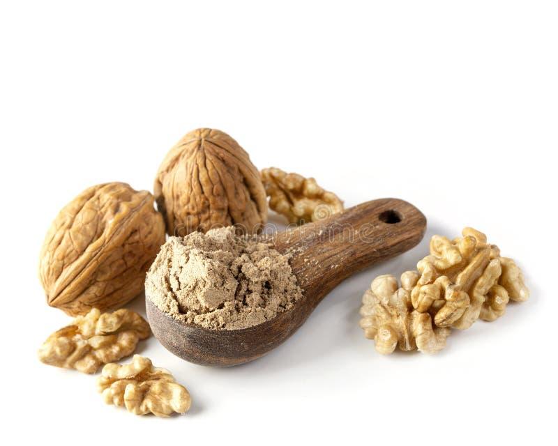 Walnut flour in the wooden spoon stock photo