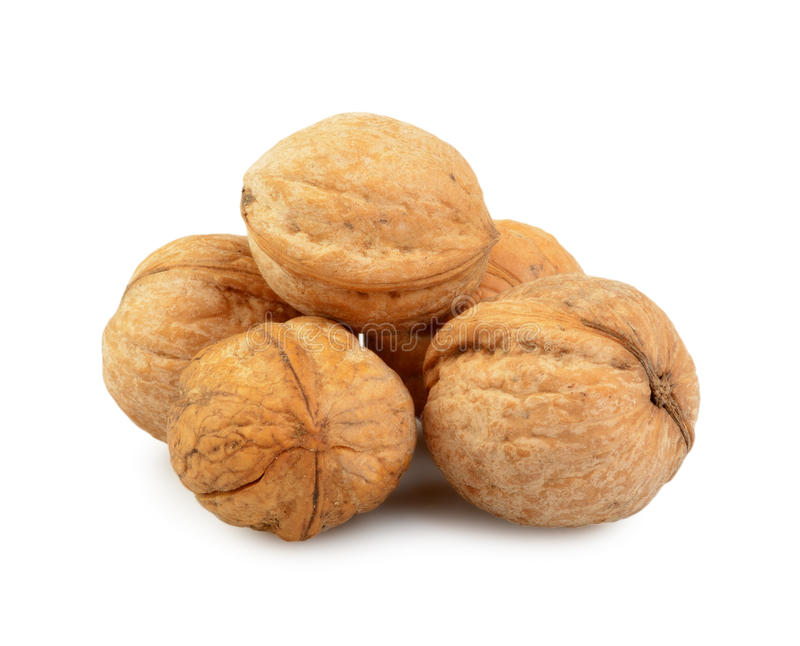 Download Walnut Group Royalty Free Stock Image - Image: 21928206