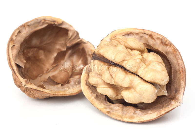 Download Walnut stock photo. Image of crop, nutrition, fruit, objects - 34364070