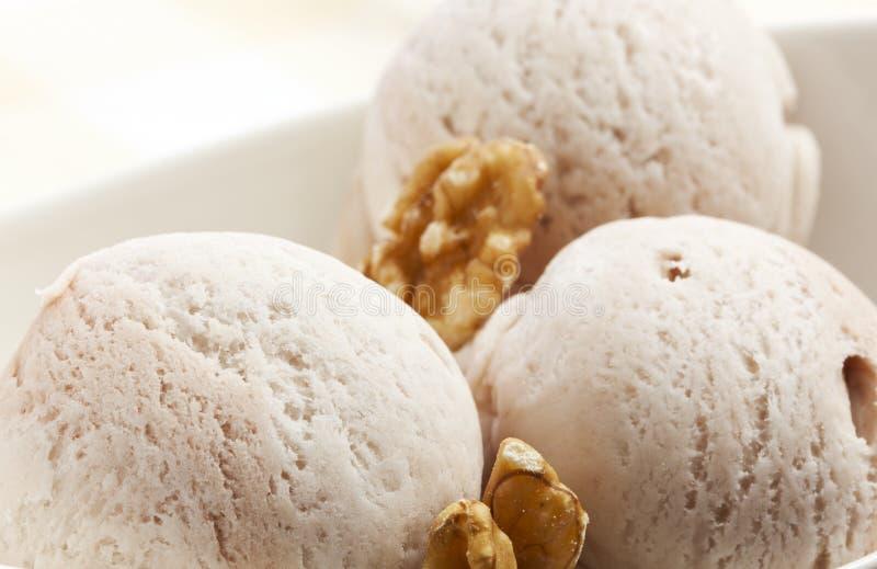 Walnut Ice Cream stock photography