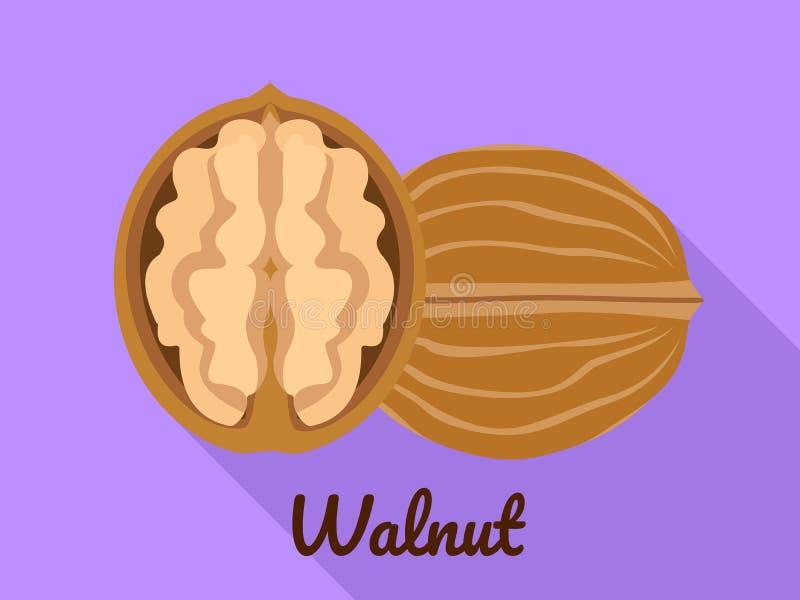 Walnut icon, flat style. Walnut icon. Flat illustration of walnut vector icon for web design stock illustration